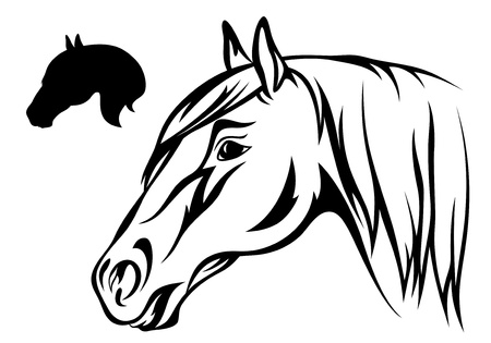 horse head illustration Vector
