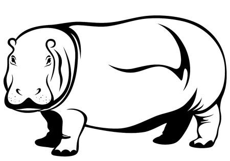 hippopotamus: hipopótamo vector Vectores