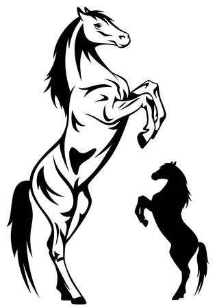 allevamento cavalli  Vettoriali