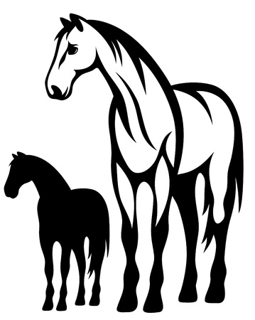 black horses: standing horse vector illustration Illustration