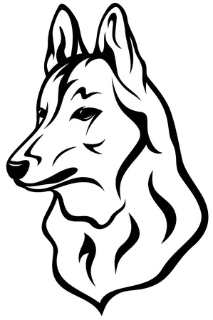 shepherd: dog head vector illustration Illustration