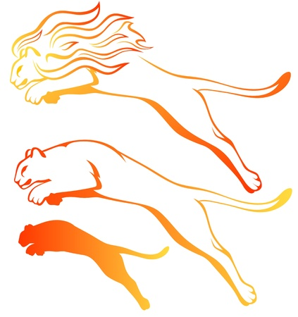 cougar: fire lions vector set