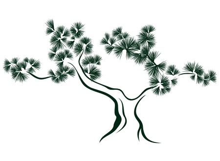 pine tree vector illustration Vector
