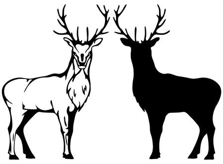 animals horned: vector deer