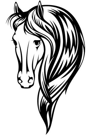 cabeza de caballo: Ilustración hermoso caballo - esquema blanco y negro de una cabeza con una larga melena