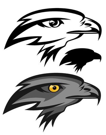 falcon: eagle illustration - black and white mascot and in color