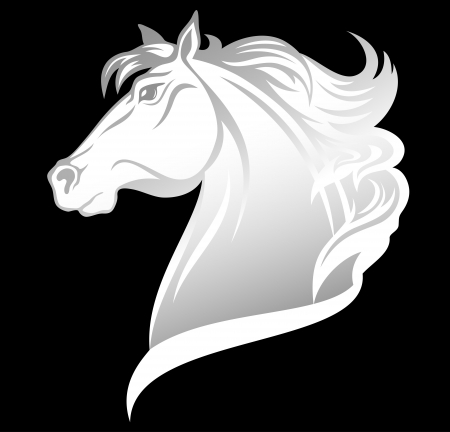 horse clipart: head of beautiful white horse  Illustration