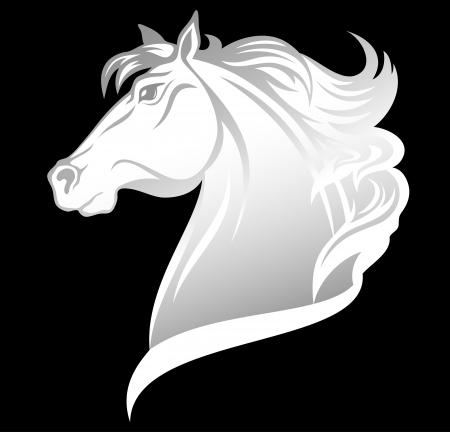 cabeza de caballo: jefe del hermoso caballo blanco Vectores