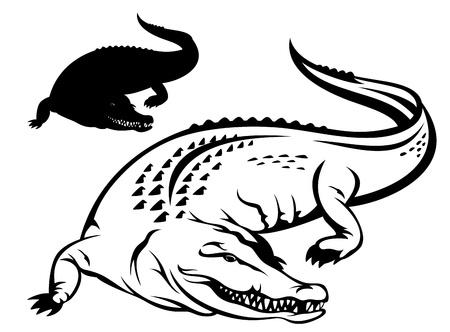 cayman: illustration crocodile - contour noir et blanc et la silhouette Illustration