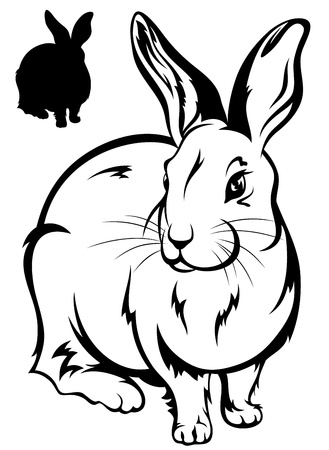 rodent: cute rabbit illustration - black and white outline and silhouette