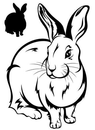 silhouette lapin: illustration lapin mignon - contour noir et blanc et la silhouette