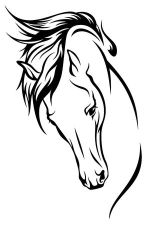 black horses: horse head with flying mane illustration Illustration