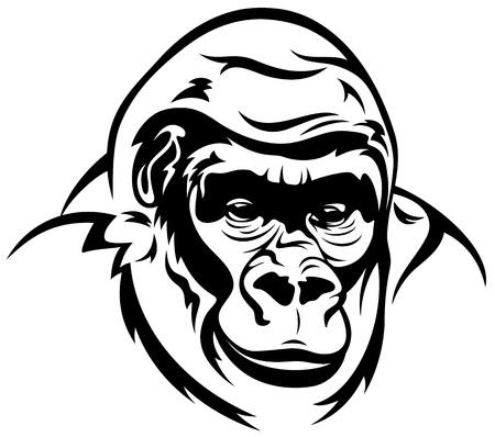 gorilla ape illustration - black and white outline