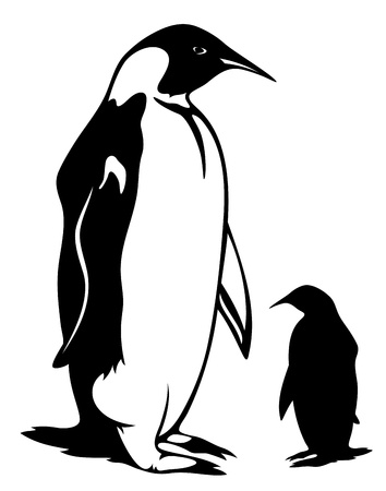 Penguins: penguin vector illustration - black outline and silhouette