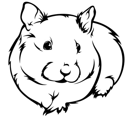 cute hamster (Cricetus) vector illustration - black and white outline Vector