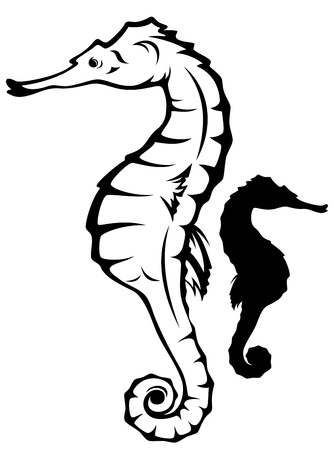 hippocampus: sea horse (hippocampus) vector illustration -black and white outline and silhouette Illustration
