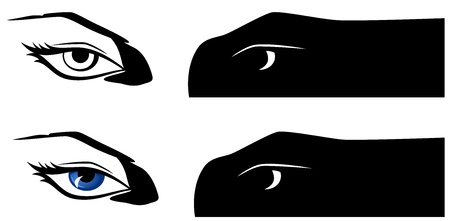 brows: female eyes looking at you illustration - black and white and color versions Illustration