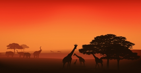 yellow african: african wildlife editable illustration - savannah at sunset Illustration
