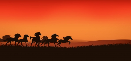 horses in the wild: herd of running wild horses - editable illustration