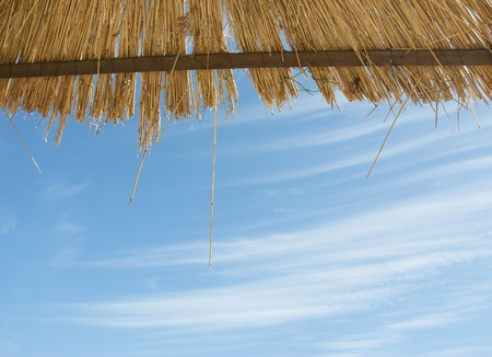 thatched: straw roof of beach umbrella and blue sky