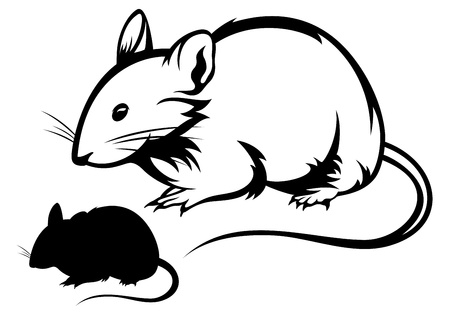 laboratory animal: mouse black and white outline and silhouette Illustration