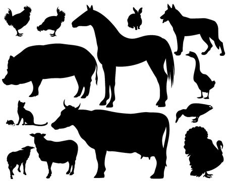 black and white farm: on the farm - set of fine animals silhouettes - black outlines over white