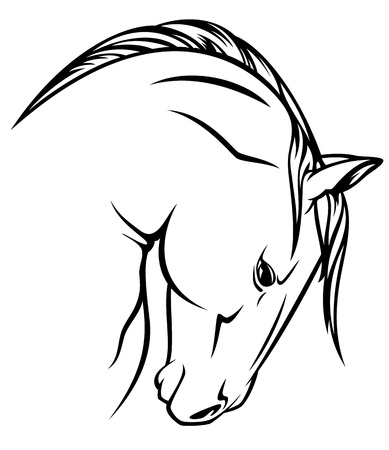horse profile vector outline - black over white Vector