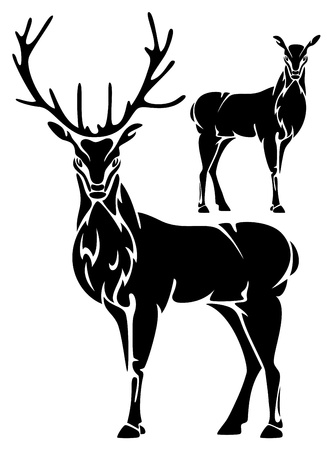 stag: standing deer black and white illustration