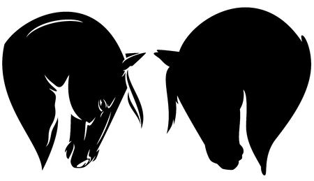 horse head: beautiful horse head profile - black vector outline and silhouette