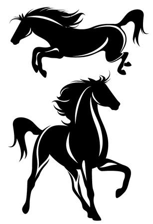 black horse: hermosos caballos de diseño en blanco y negro - vector esquema detallado