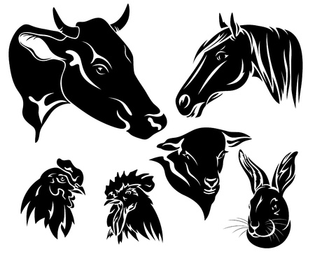 on the farm design set - black and white animals Vector