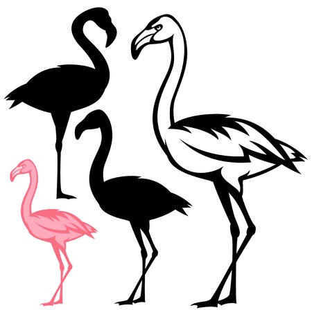 flamingo bird outline and silhouette Vector
