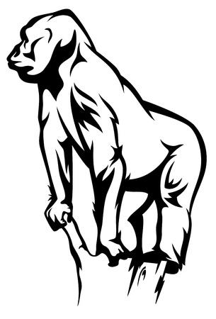 primate: gorilla vector illustration - black and white outline