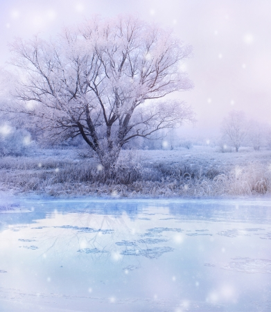 winter magic landscape - snowfall over lake and tree photo