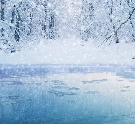 schneeflocke: Winter in den Wald - See und schneebedeckten Weg