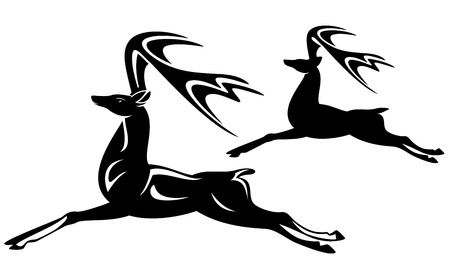 animals outline:  beautiful running deer black and white vector outline and silhouette Illustration