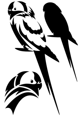 budgie:  parrot birds design set - black and white vector outline and silhouette