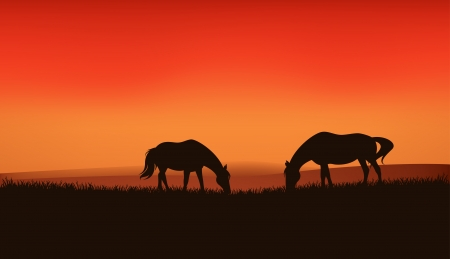 grazing horses silhouettes at sunset - vector background - dark silhouettes against bright sky