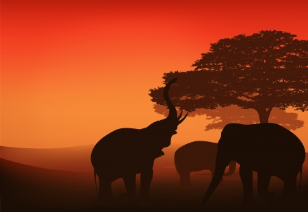 Sunset landscape vector: elephants walking in african savannah at sunset - bright vector landscape