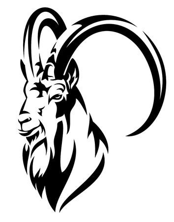 capricornio: cabra montés (cabra montés alpino, Capra ibex) jefe de diseño realista del vector blanco y negro Vectores