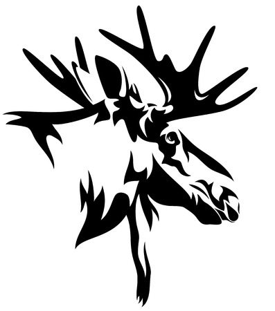 bull head:  moose or elk  Alces alces  head black and white design - realistic animal outline