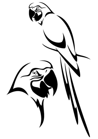 birds:  tropical parrot and bird head black and white vector outline