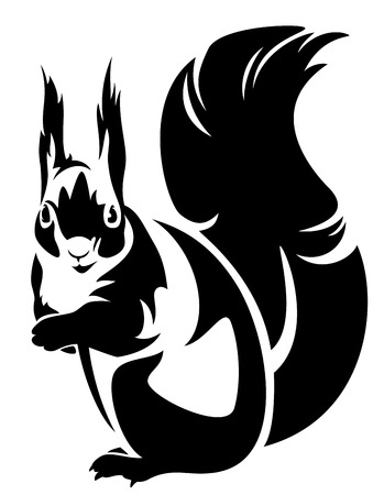one animal:  sitting squirrel (sciurus) - black and white outline Illustration