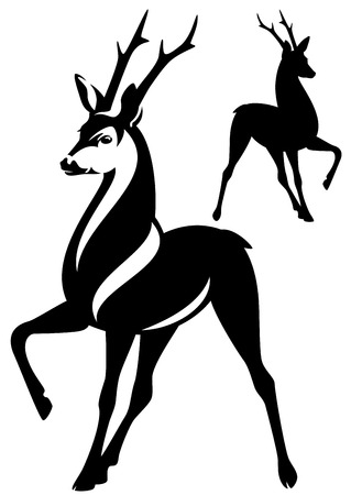 roe: deer stag with beautiful antlers standing gracefully - black and white vector outline and silhouette