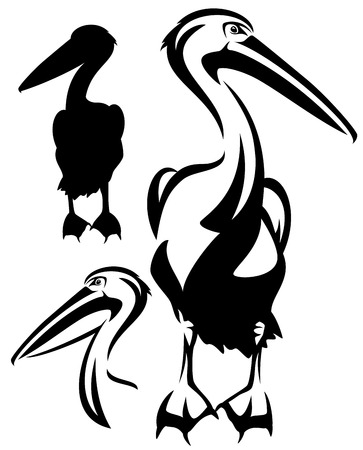 pelicans: pelican bird black and white outline - vector collection of bird head design and silhouette