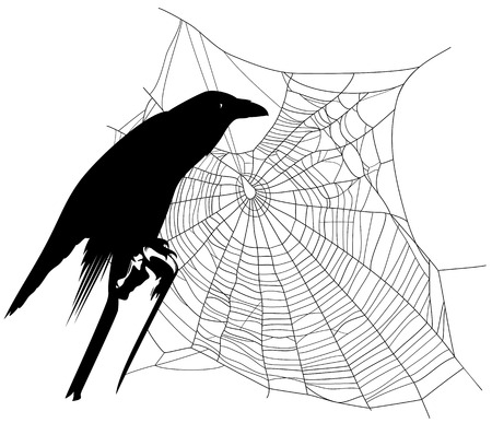 ominous: halloween theme raven with spider web decor - black and white ominous silhouettes Illustration