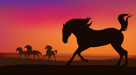 mustang horse herd running at sunset - silhouettes of speeding animals against bright sky Vector