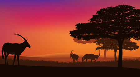 african savannah with grazing antelopes sunset landscape - wildlife scene vector  Vector