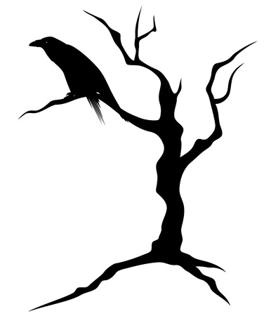 ominous: black raven bird sitting on the bare twisted tree - ominous silhouette for Halloween theme design Illustration