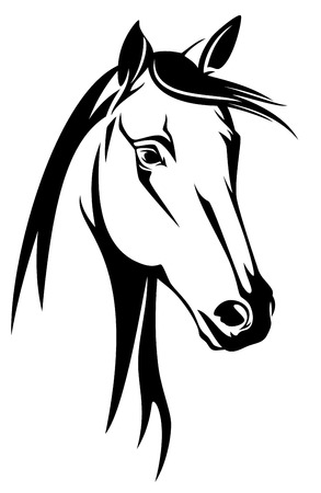 contours: horse head black and white design